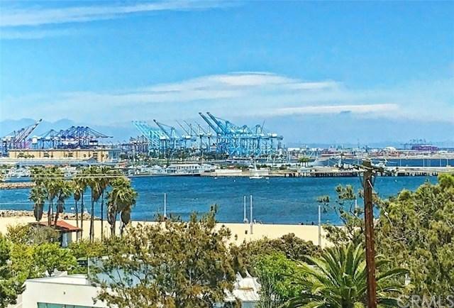 3647 Stephen M White Drive, San Pedro, CA 90731   Photo 14